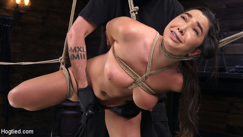 HOGTIED: May 10, 2018 – Karlee Grey