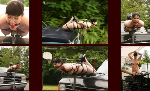 All House of Gord: Hogtie Paige Hood Ornament