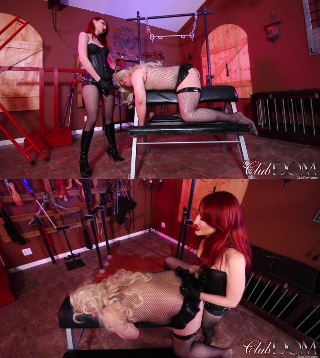 Club Dom: Goddess Kendra Pegs the Bimbo