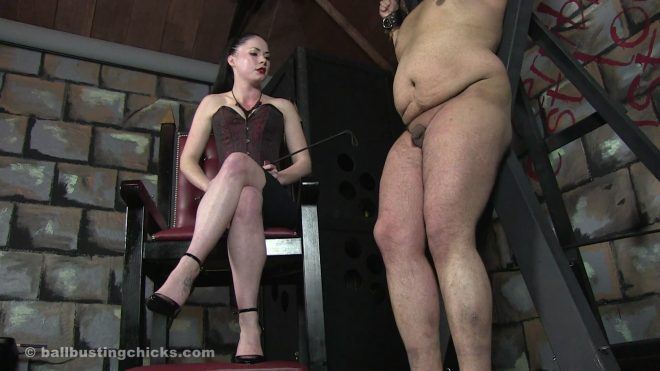 Ball Busting Chicks: Sophia: Men with small dicks get punished!