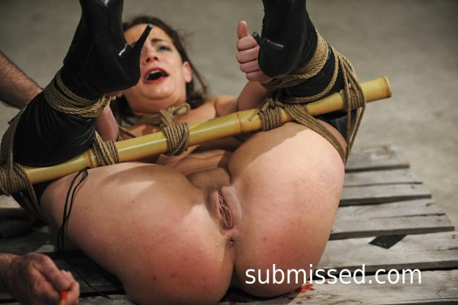 Hogtied Up: All That Sparkles