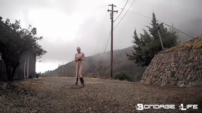 Bondage Life: Rachel Greyhound 2 updates Part 1