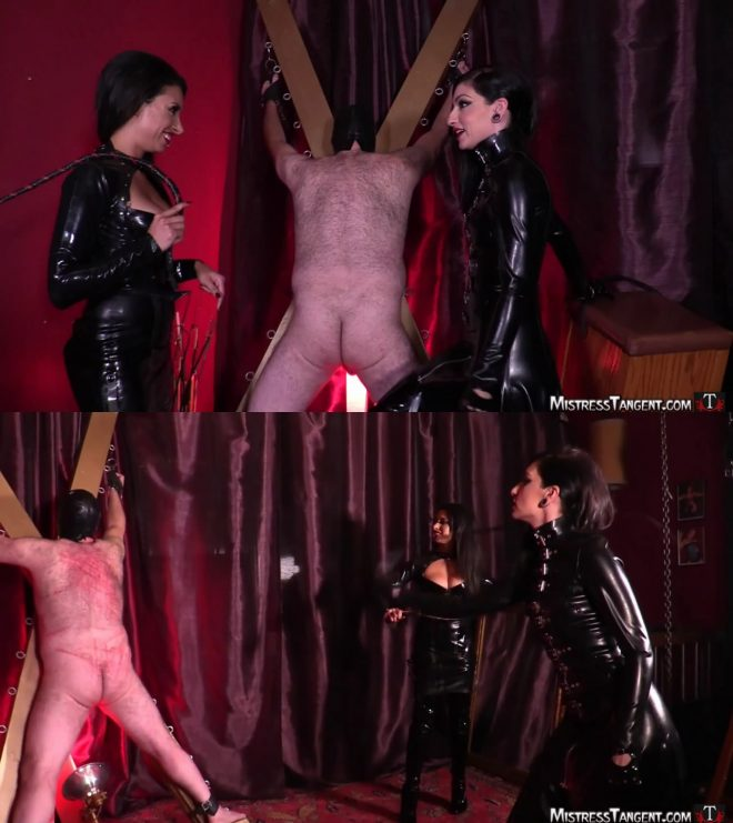 Mistress Tangent: Wild Whipping