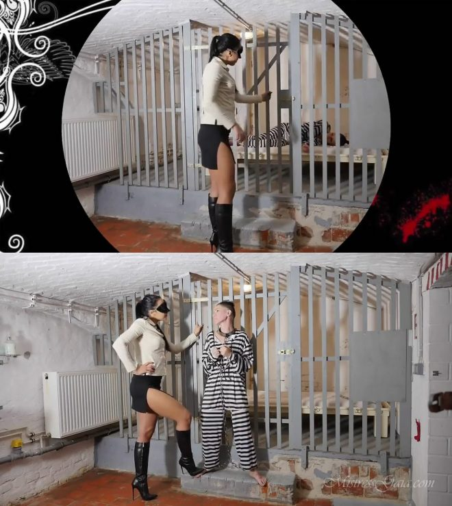 MISTRESS GAIA: PAINFUL FACESLAPPING LESSON – HD version