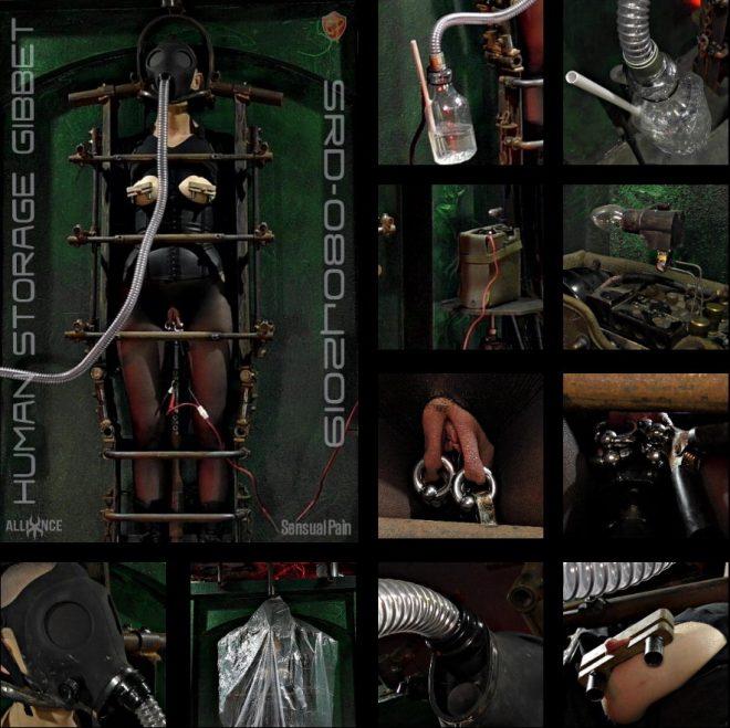 SENSUAL PAIN: Aug 4, 2019: Human Storage Gibbet  SRD08042019   Abigail Dupree