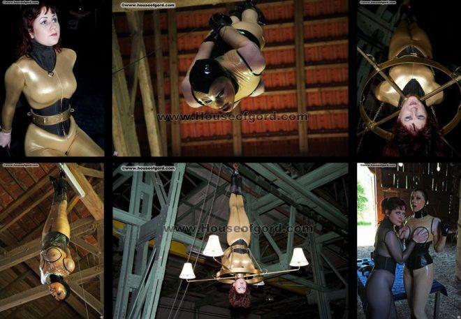 All House of Gord Scenes: Transylvanian Bat Virus hits München