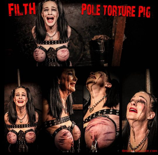 Brutal Master Pole Torture Pig: Filth is a Pole Torture Pig (Release date: Apr 06, 2021)