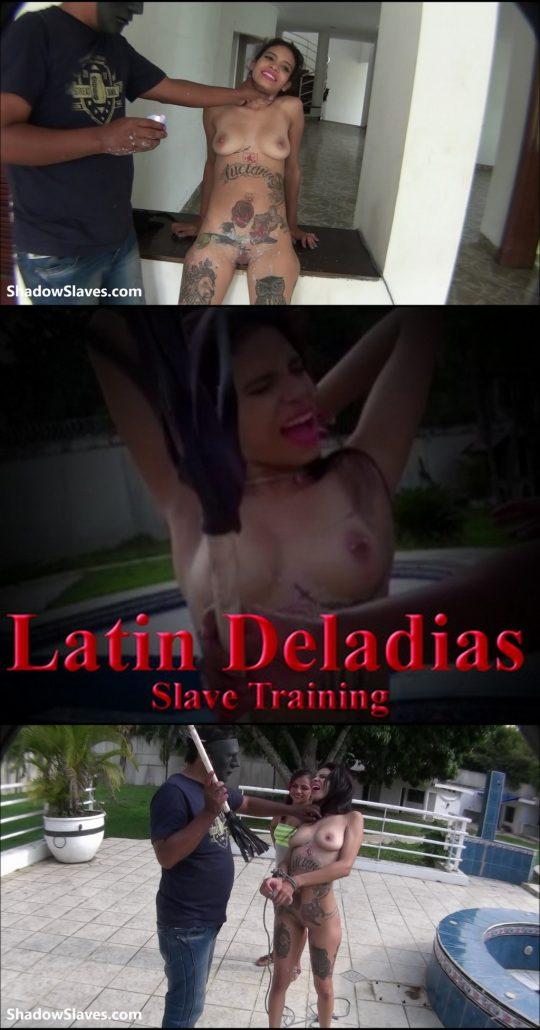 Shadowslaves: Slavegirl Deladia – Slave Training